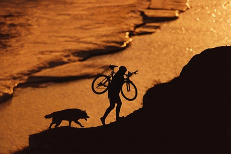 Riding Bike with Man's Best Friend