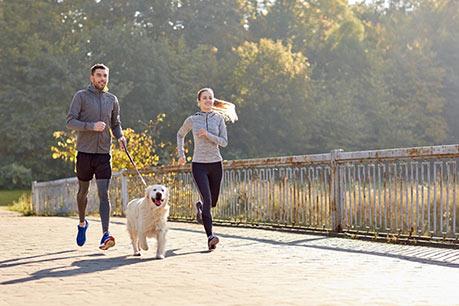 Joggen mit Hund: Das rät die Tiermedizinerin