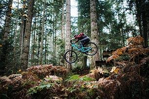 5 Mountainbike-Arten einfach erklärt
