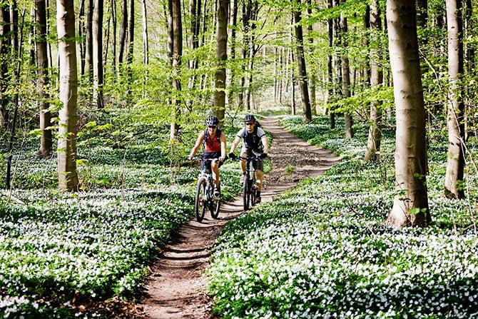 Paar radelt durch Laubwald