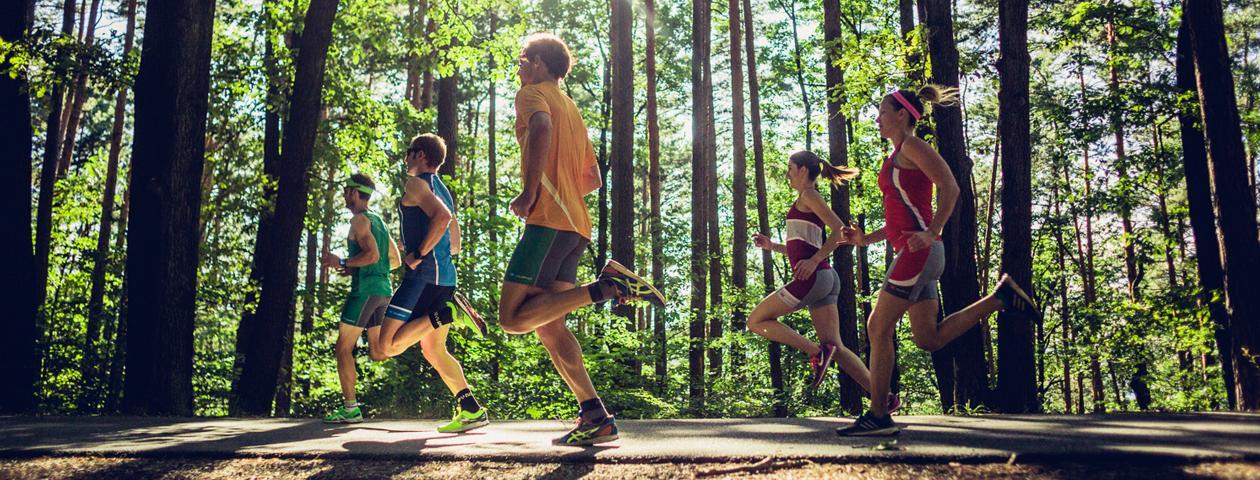 Gruppo di runner corre nel bosco con abbigliamento da corsa dai colori vivaci.
